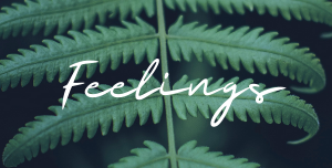 Learning Series: Feelings