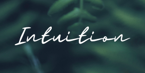 (Pre-Register) Learning Series: Intuition