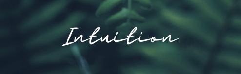 Learning Series: Intuition