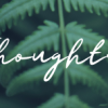 Learning Series: Thoughts